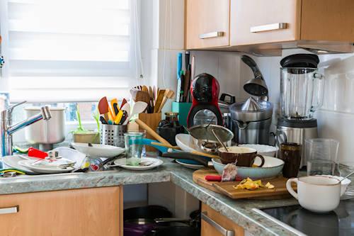 Apartment Cleanout